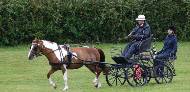 Traditional Driving Day, Saturday 2nd Aug 2014